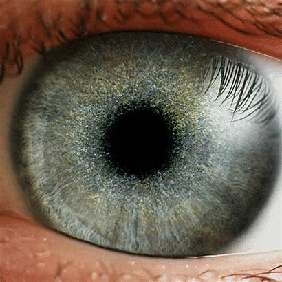 Eye Hypnotic Gifs Iris Eyes Giphy Beholder