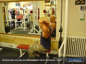 Reverse Grip One Arm Seated Overhead Tricep Extension ...