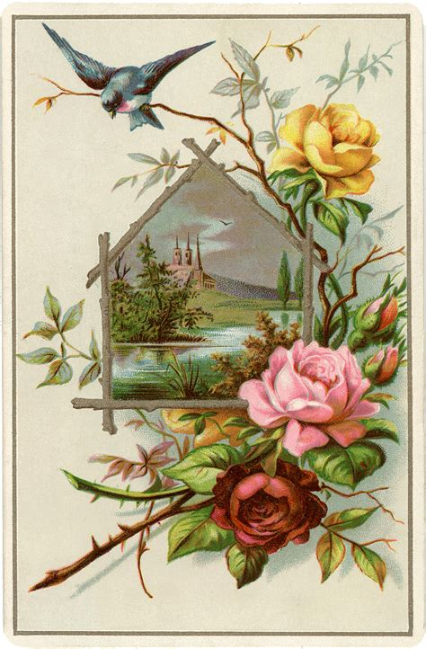 pretty vintage roses picture  graphics fairy