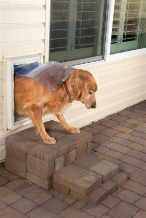 installing  pet door thriftyfun