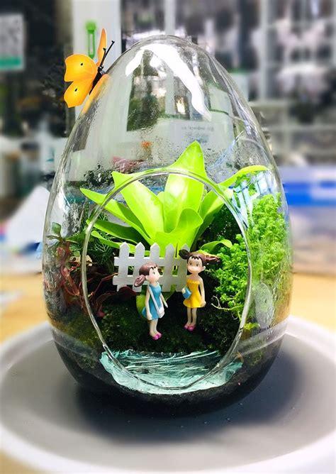 ปักพินในบอร์ด ภอเพลิณ สวนจิ๋วในขวดแก้วใส greeninglass.thailand