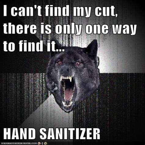 Insane Wolf Meme - insanity wolf memes pictures
