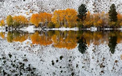 Fall Early Nature Wallpapers Trees Winter Bishop