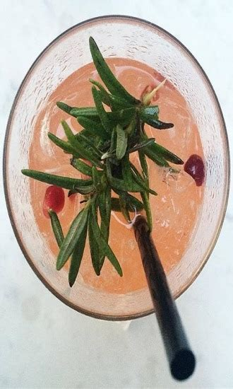 italian greyhound cocktails  shots