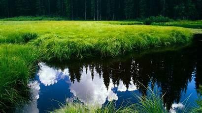 1080p Nature Landscape Widescreen Lcd Monitor Desktop