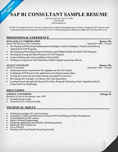 sample resume for sap fico consultant - sap sales resume
