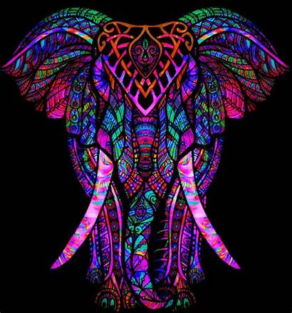 Elephant Colorful Psychedelic Sign Liked Users Freetoedit