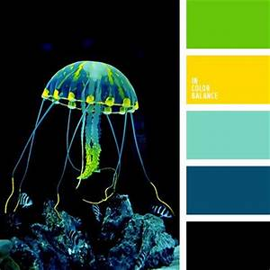 Color balance Color palettes and Jellyfish on Pinterest