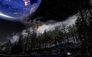 Forest, At, Skyrim, Nexus