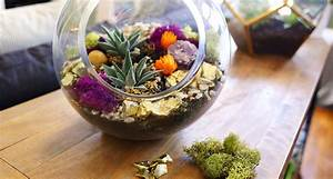 Succulents Part 2: Creative Ideas and Tips for Decorating
