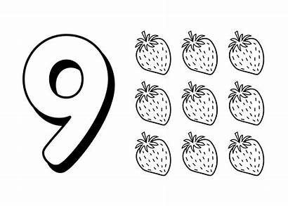 Coloring Pages Number Numbers Worksheets Printable Colouring
