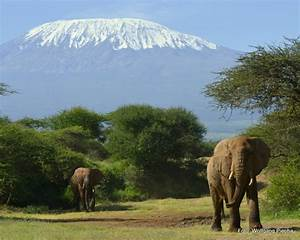 Mount Kilimanjaro Mountain Information