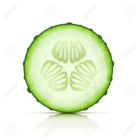 cucumber slice clipart cucumber cliparts