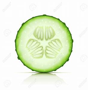 Cucumber cliparts
