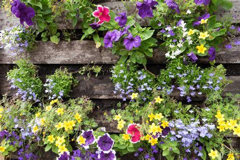 Blumenkasten Selber Bauen by Blumenkasten Selber Bauen 187 Mit Folie Oder Ohne