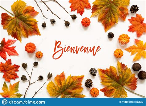 Bright Colorful Autumn Leaf Decoration, French Text ...