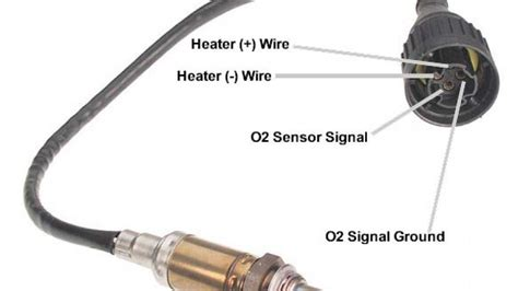 What Is The Relationship Between Oxygen Sensors And The