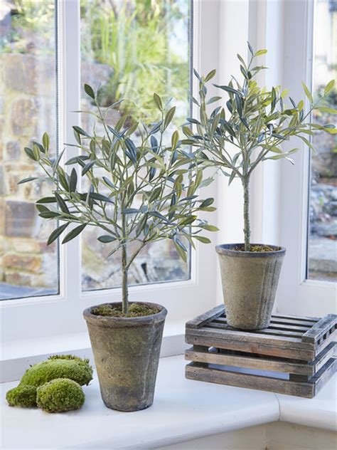 small faux olive tree small fake olive tree nordic house