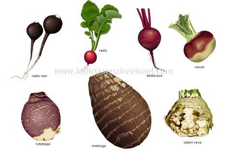 alimentation et cuisine gt alimentation gt légumes gt légumes
