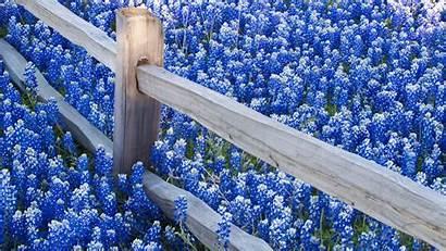 Wallpapers Desktop Computer Nature Hdtv Pixelstalk