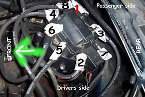 Chevy V8 Firing Order Diagram