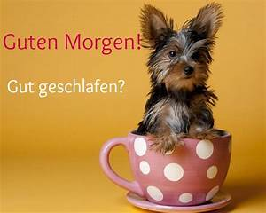 Whatsapp Guten Morgen Bilder Kostenlos : forum re guten morgen guten tag 431 ~ Frokenaadalensverden.com Haus und Dekorationen