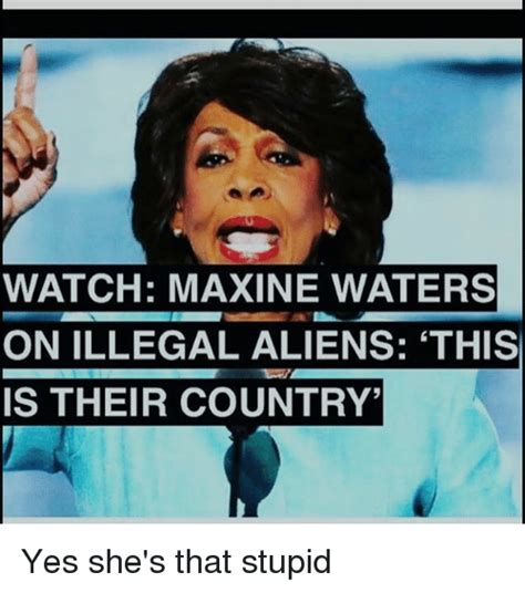 Maxine Waters Memes - funny maxine waters memes of 2017 on sizzle trumped