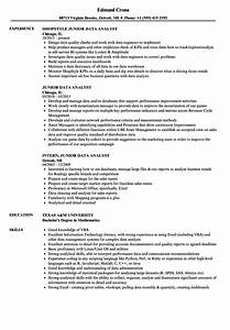 junior data analyst resume samples velvet jobs With data analyst resume sample