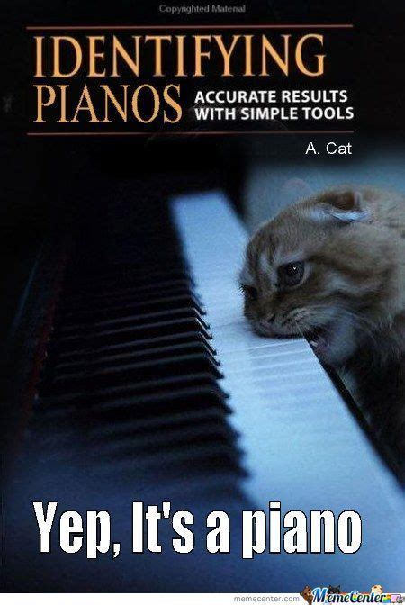 Piano Memes - piano memes best collection of funny piano pictures
