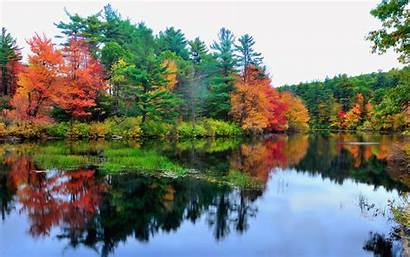 Autumn Lake Colorful Trees Colourful Backgrounds Wallpapers
