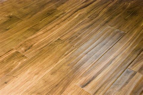 vinyl flooring dogs top 28 vinyl plank flooring with dogs best cleaner for hardwood floors and tile pledge tile