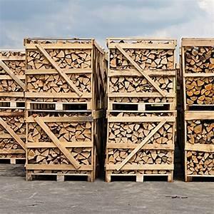 Brennholz Buche 25 Cm Kammergetrocknet : brennholz buche 25cm 3 2 srm 2rm kammergetrocknet ca 900kg auf paletten ~ Orissabook.com Haus und Dekorationen