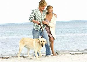 Marley And Me 2008 images Marley & Me Wallpaper HD ...