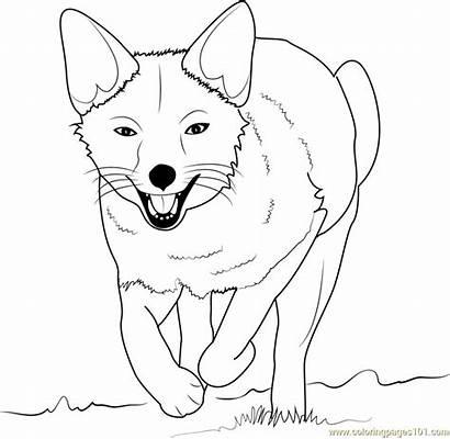 Fox Coloring Pages Face Running Printable Kawaii