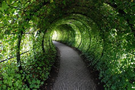 poison gardens step inside the world s most dangerous garden if you dare travel smithsonian