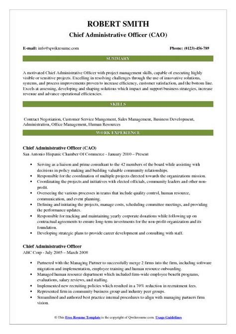 Resume Administrative Officer by Chief Administrative Officer Resume Sles Qwikresume