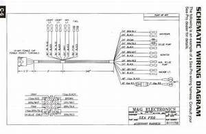 2002 Sea Pro Wiring Diagram