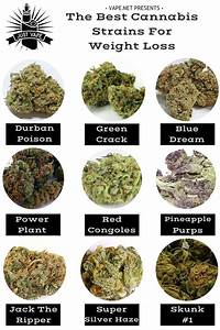 legal weed seeds usa