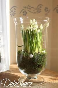 Frühlingsdeko Im Glas : die besten 17 ideen zu glasvase auf pinterest magnolien terrarium und sukkulenten ~ Orissabook.com Haus und Dekorationen