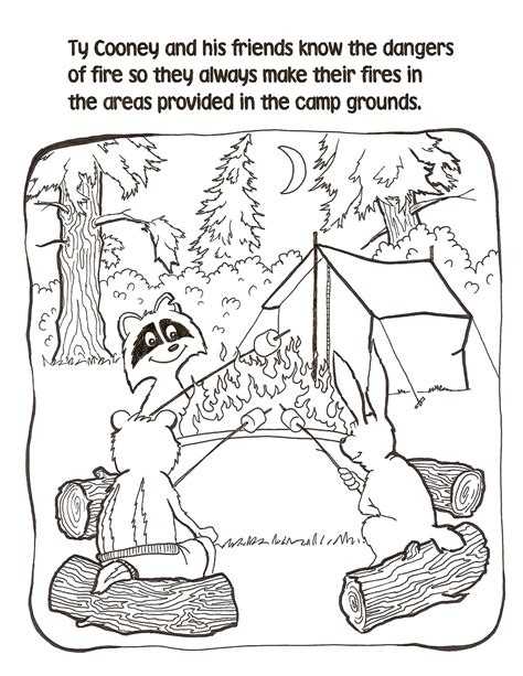 campfire safety  tycooney