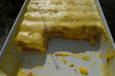 quel dessert pour noel quel dessert pour no 235 l un vacherin 224 la vanille et 224 l ananas et d autres id 233 es un an pour