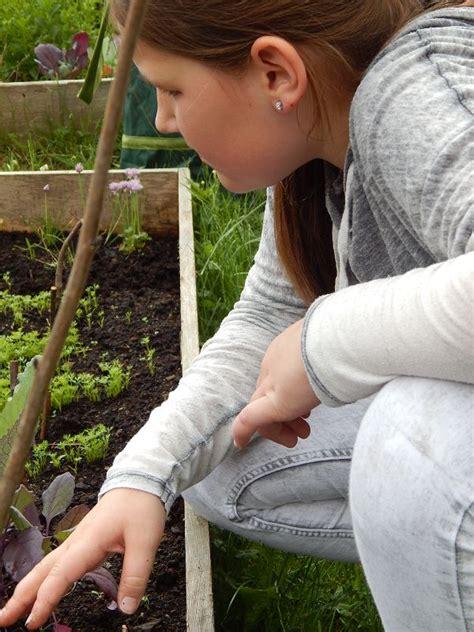 Garten Und Ideen Geeste garten ag grundschule ideen gartencenter101