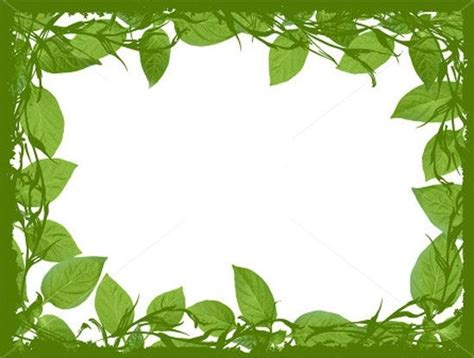 Nature Border Clipart Rame Plant Leaves Plants