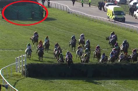 aintree ladies day crowds steal attention   races