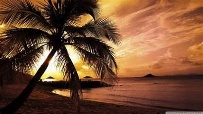 Sunset Beach Tropical Desktop Wallpapers Background Widescreen