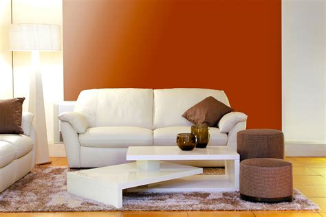 how to clean a diy upholstery cleaning explained