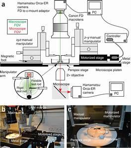Experimental Setup For Measuring Monolayer Mechanics   A