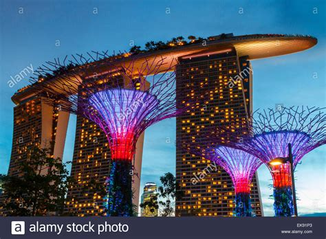 Hotel Near Garden By The Bay Singapore - gardens by the bay and marina bay sands hotel at dusk