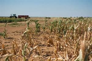 Cracked earth: Drought around the world LICHTENBURG, SOUTH ...