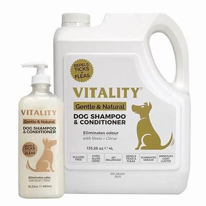 Shampoo Conditioner Dog Vitality Ph Ccpi
